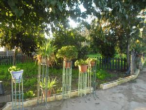 Finca rústica en Venta en Dos Hermanas Ciudad - La Hacienda - Nueva Andalucía / La Hacienda - Nueva Andalucía