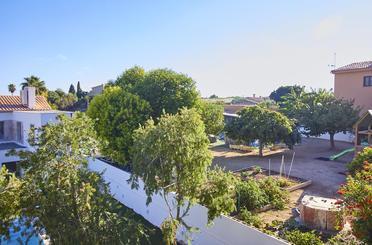 Dachboden zum verkauf in Calvià pueblo
