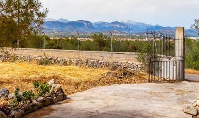 Wohnimmobilien zum verkauf in Marratxí