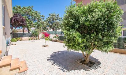 Pisos en venta en Illes Balears Provincia