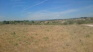 Terreno en Venta en El Pardo a Fuencarral / Fuencarral