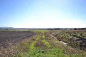 Terreno en Venta en La Vega / Conil de la Frontera