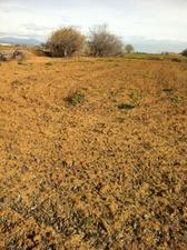 Terreno en Venta en Camino Torrejon / Casco Antiguo
