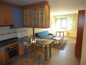 Alquiler Vivienda Apartamento pontevedra. zona vialia