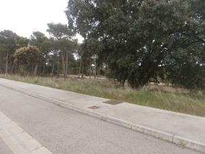 Venta Terreno Terreno Urbanizable romero