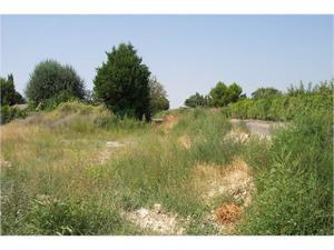Terreno en Venta en Osera de Ebro / Osera de Ebro