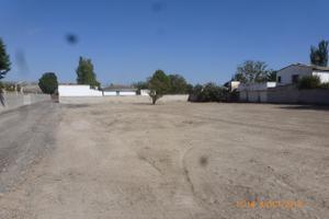 Terreno en Venta en Fuentes de Ebro, Zona de - Nuez de Ebro / Osera de Ebro