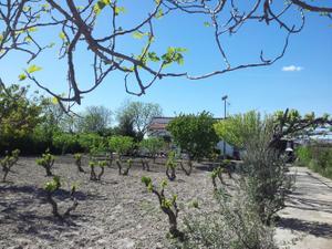Chalet en Venta en Osera de Ebro / Villafranca de Ebro