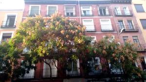 Piso en Venta en Fernandez de Los Rios / Chamberí