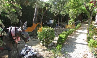 Estudios de alquiler baratos en Villaviciosa de Odón