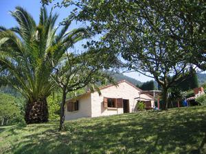 Finca rústica en Venta en Siero - Zona Rural / Zona Rural