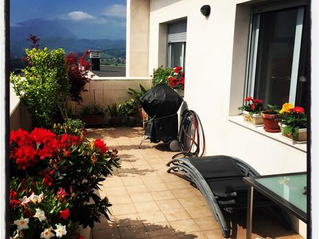 Plantas intermedias de alquiler en Oviedo