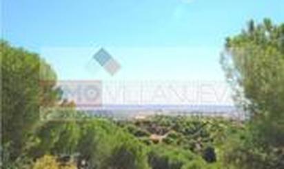 Land for sale in Los Llanos - Valle Pardo