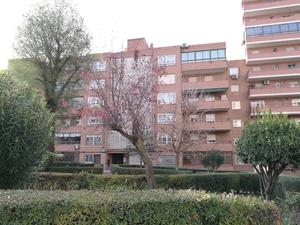 Pisos de alquiler en Zona Norte - Universidad en Móstoles, Móstoles