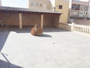 Plantas intermedias en venta en Illes Balears Provincia
