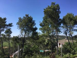 Chalet en Alquiler en Sant Sadurní D'anoia, Zona de - Mediona / Mediona