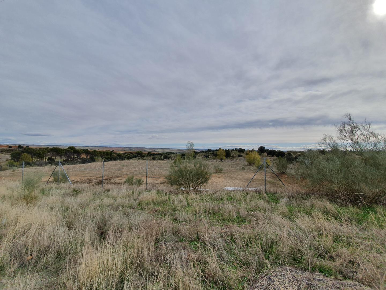 Terreno en venta en Carretera de Ajalvir, 13, Ribatejada