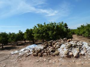 Venta Terreno  vila-real - cariñena - carinyena