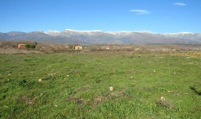 Lands for sale at Cáceres Province