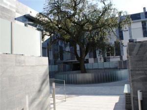 Piso en Alquiler en Collado Villalba - Villalba Pueblo / Villalba Pueblo