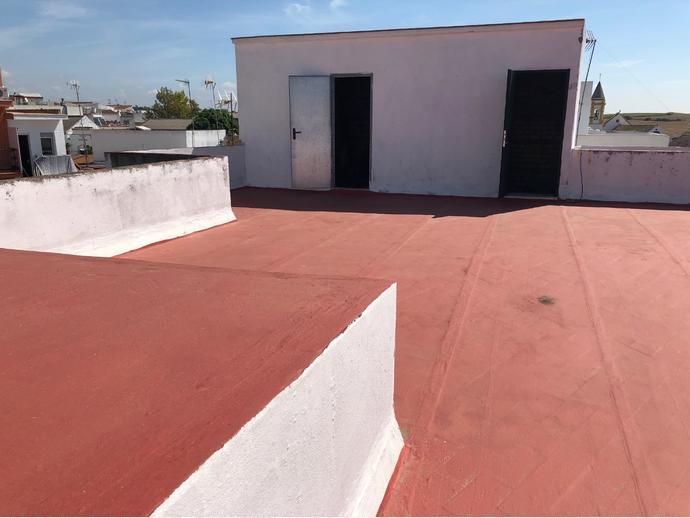Foto 31 de Finca rústica en Palomares - Almensilla, Zona De - Palomares Del Río / Palomares del Río