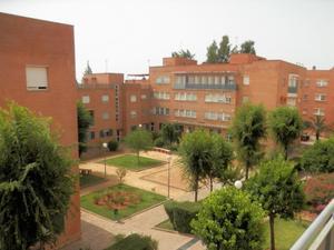 Plantes intermitges de lloguer amb ascensor a Sevilla Província