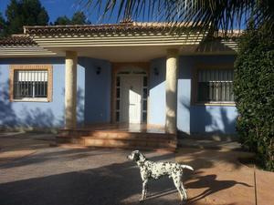 Venta Vivienda Casa-Chalet molina de segura - la alcayna