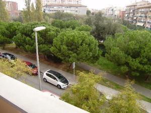 Piso en Alquiler en Sant Feliu de Llobregat - Mas Lluí / Can Calders - Mas Lluí - Roses Castellbell
