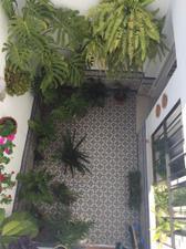 Casa adosada en Venta en Campiña de Carmona - El Viso del Alcor / El Viso del Alcor