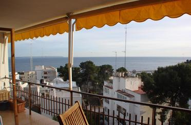 Wohnung miete in  Palma de Mallorca