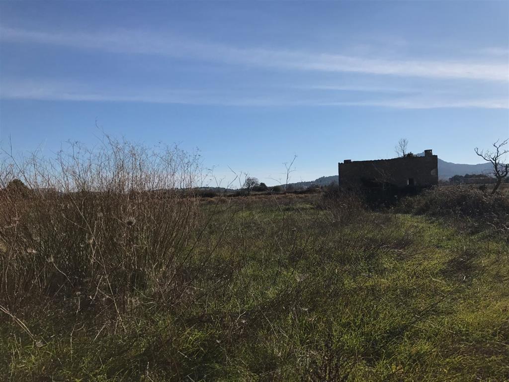 Solar urbà  Migjorn - santanyí, zona de - felanitx