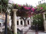 Vivienda Ático centro - portal de elxe- plaza de correos (g.miro)