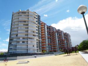 Alquiler Vivienda Apartamento calle dr. ramón castroviejo (peñagrande)