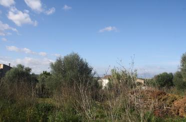 Bebaubares Gelände zum verkauf in Sineu