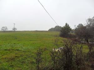 Terreno en Venta en Urduliz, Zona de - Urduliz / Urduliz