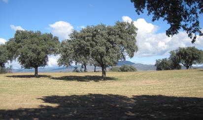 Terreno en venta en Nombela