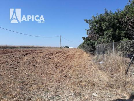 Terrenos En Venta En Los Franceses La Vega Chiclana De La Frontera Fotocasa