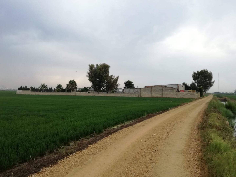 Industrial building  Camino del reg de la orellana
