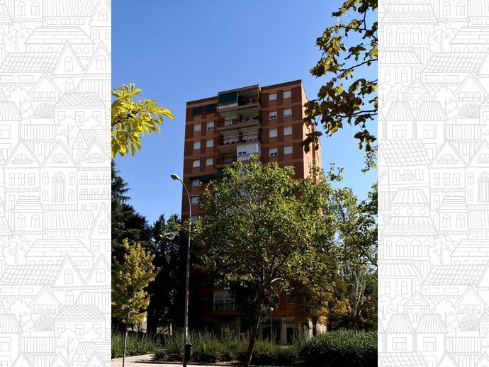 Foto 29 de Piso en Madrid ,Las Musas / Rosas - Musas,  Madrid Capital