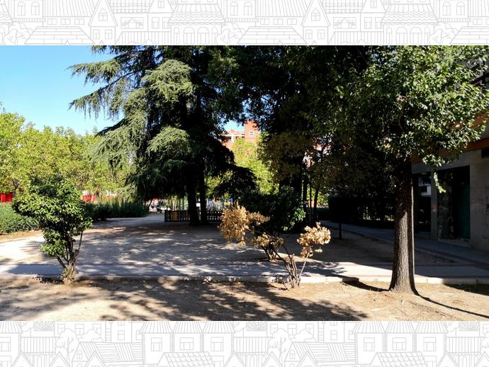 Foto 31 de Piso en Madrid ,Las Musas / Rosas - Musas,  Madrid Capital