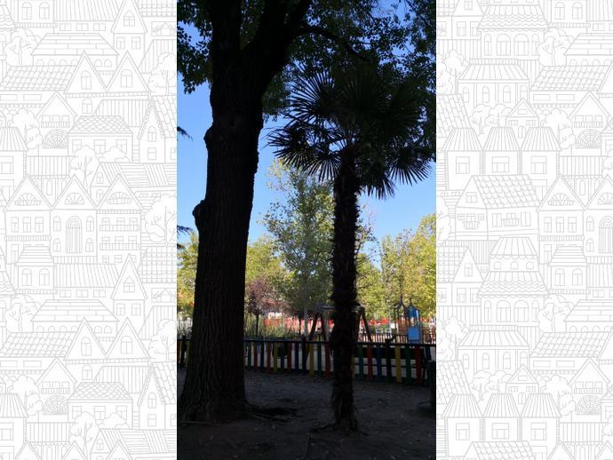 Foto 32 de Piso en Madrid ,Las Musas / Rosas - Musas,  Madrid Capital