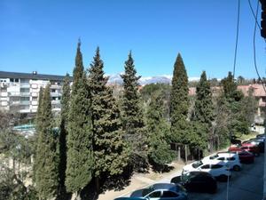 Piso en Alquiler en Olmosierra / Zona Colegios