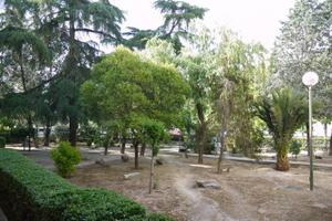 Venta Vivienda Piso arroyo del olivar