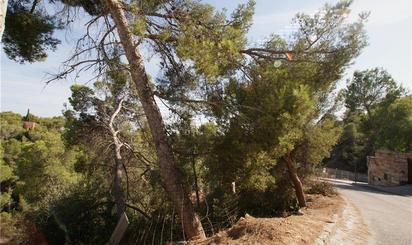 Bebaubares Gelände zum verkauf in Calvià