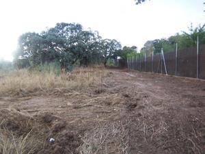 Venta Terreno Terreno Residencial alamo de bularas