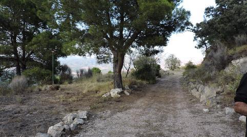Foto 2 de Finca rústica en venta en Tibi, Alicante