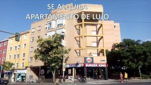Alquiler Vivienda Apartamento general ricardos, 89