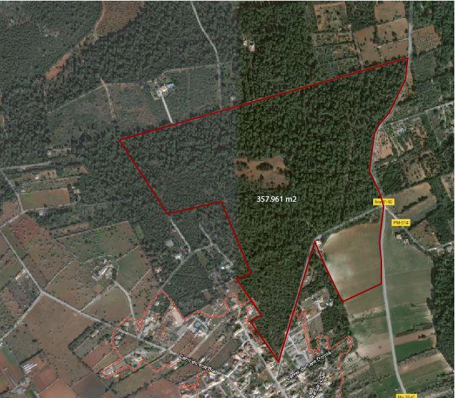 Area edificabile urbana  Pina. Terreno en pina