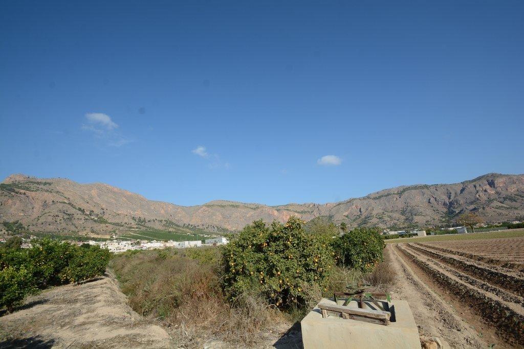 Solar urbano  Orihuela ,raiguero de bonanza. Parcela rústica de 5600 m2. de superficie en el raiguero de bona