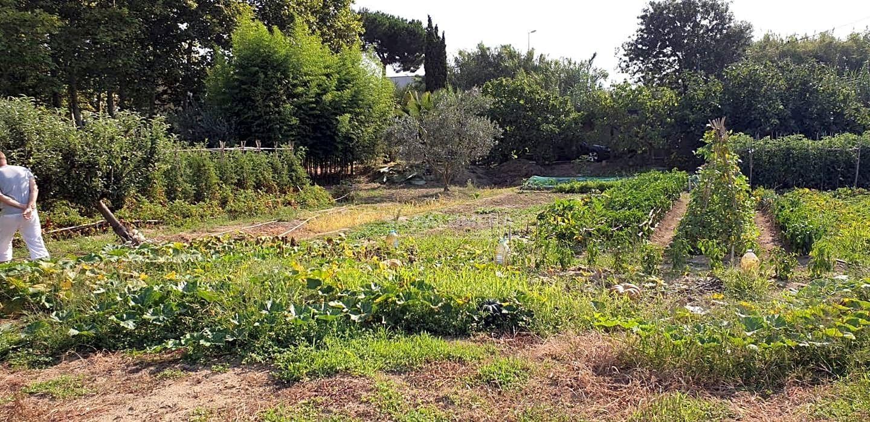 Solar urbano en Els Pins. Este terreno se encuentra en blanes, girona. es un terreno rústi